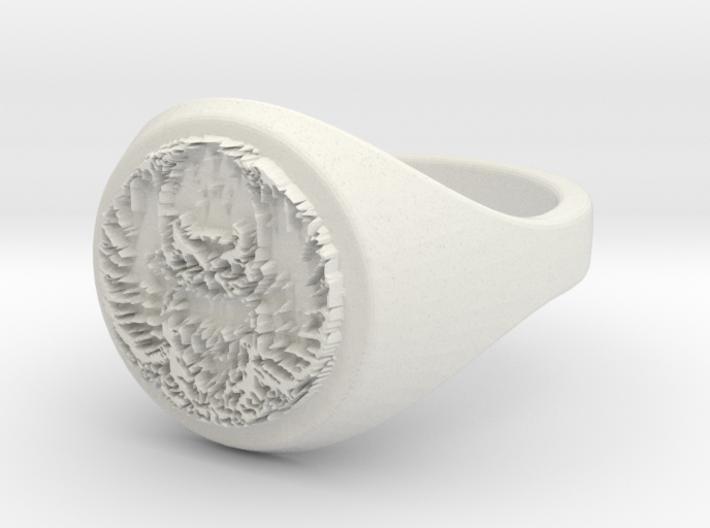 ring -- Wed, 18 Dec 2013 08:11:58 +0100 3d printed