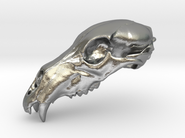 Bear Skull pendant, 4cm 3d printed