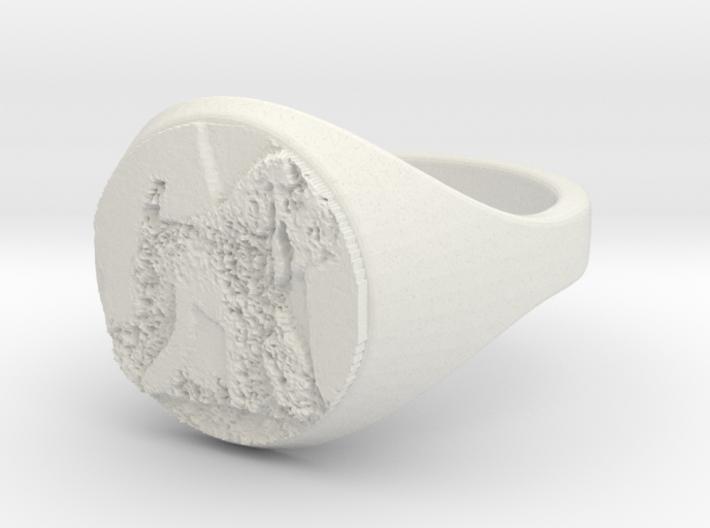 ring -- Mon, 30 Dec 2013 20:04:50 +0100 3d printed