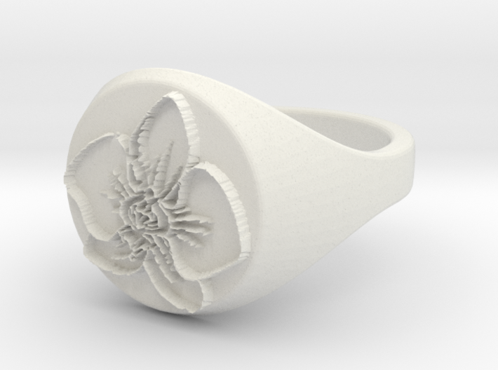 ring -- Sun, 17 Mar 2013 23:56:45 +0100 3d printed