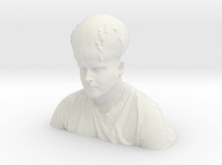 Max Hair 3d printed