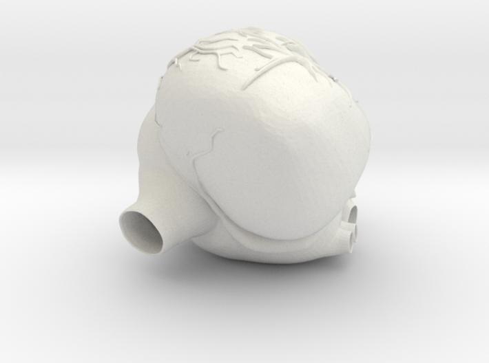 Heartpump 3d printed