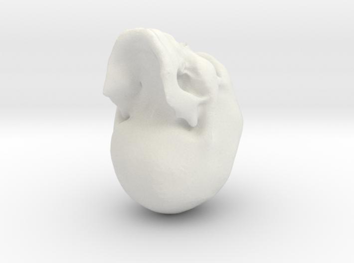 skull3 3d printed