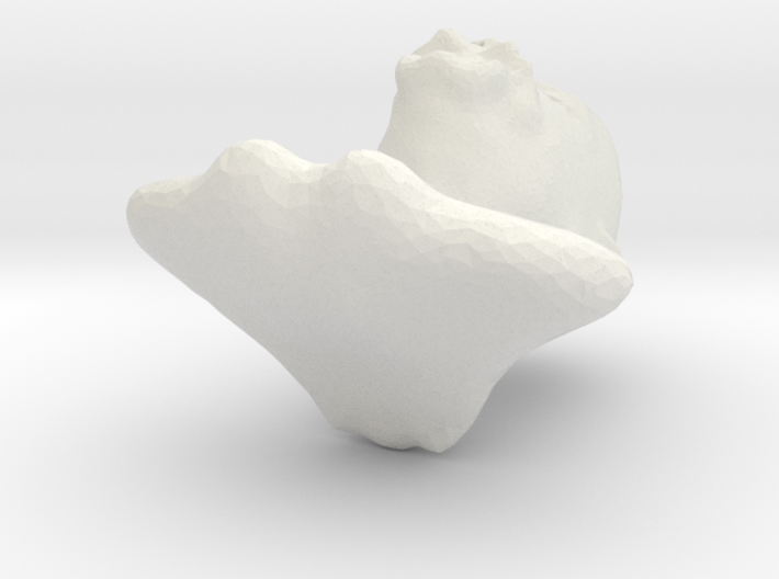 ismer?s? 3d printed