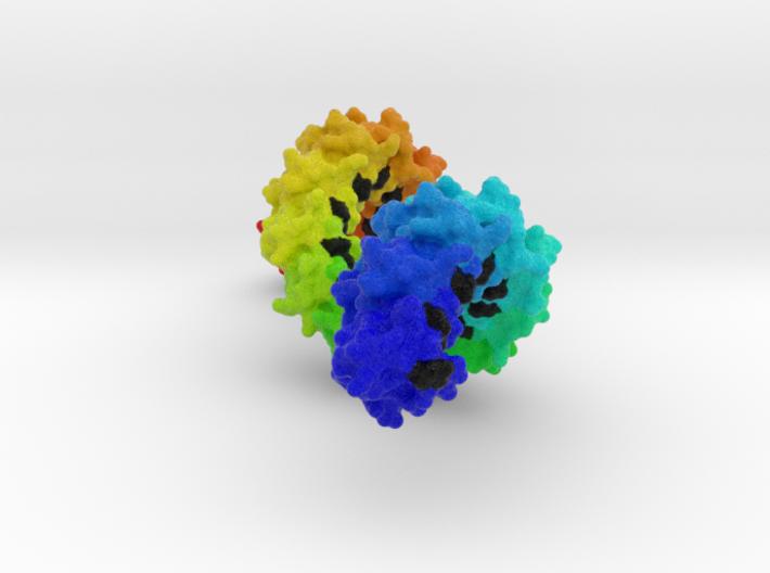 Sppr Rainbow 30cm version 3d printed