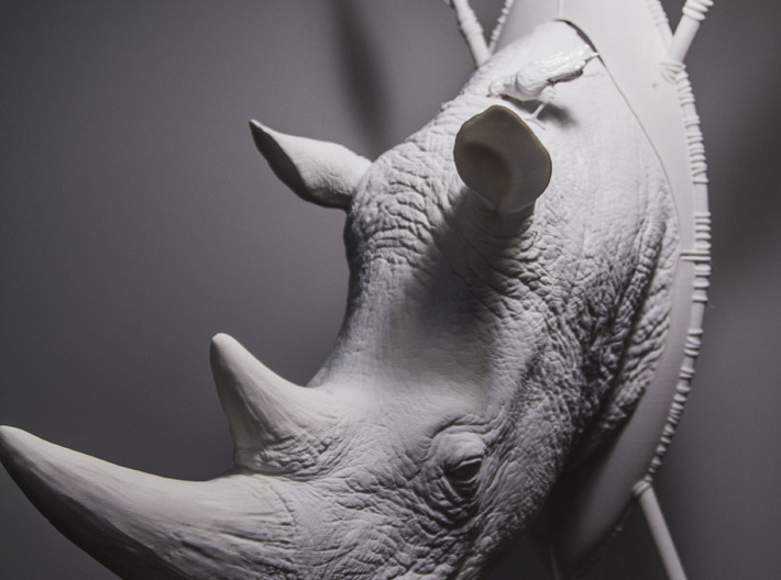 Part 1 of 3 White Rhino (Headpiece) 3d printed printed for a show