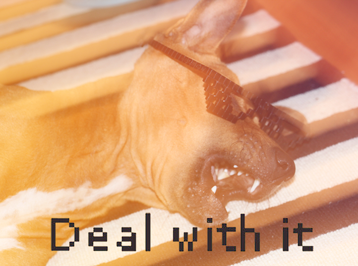 DEAL WITH IT - shades 3d printed