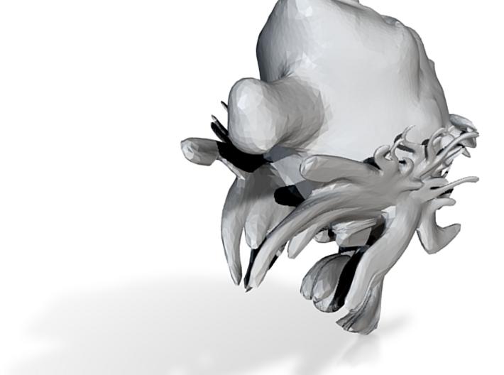 3Desu 3d printed