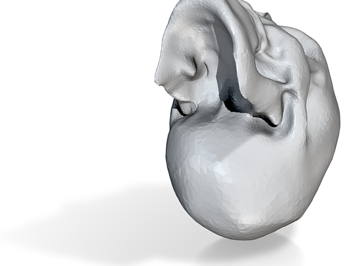 SilverSkull 3d printed