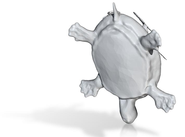funky tortoise 3d printed