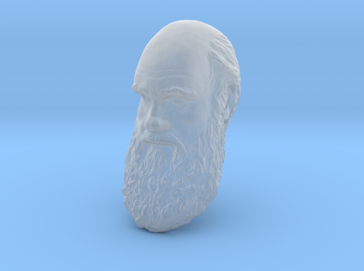 "Charles Darwin 6"" Head Wall Mount 3d printed"