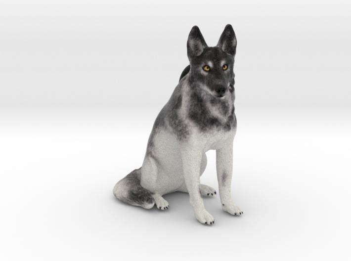 Custom Dog Ornament - Koi 3d printed