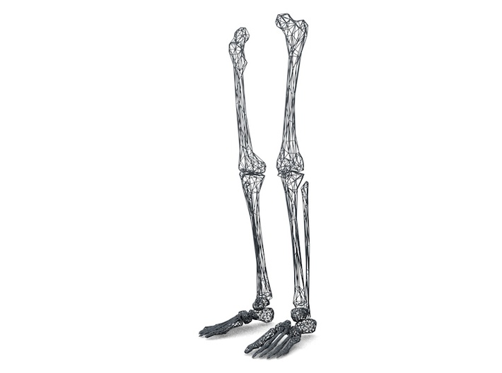 Life Size Poly Legs and Feet - Skeleton 3d printed