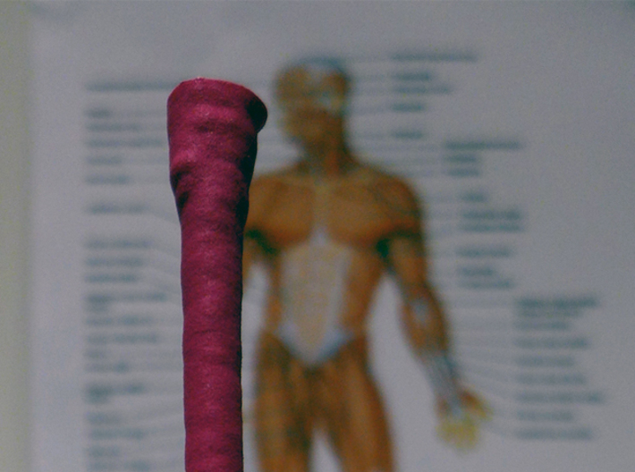 Muscle Fiber 3d printed Add a caption...