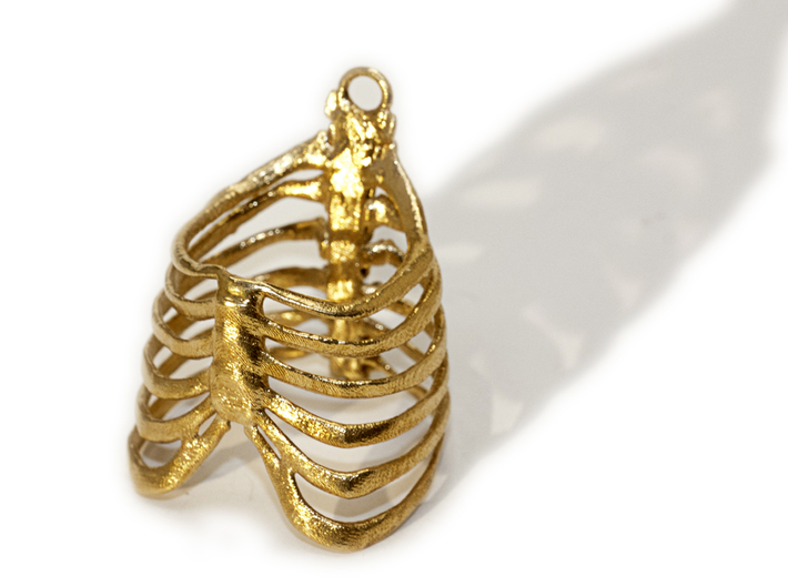 Ribcage Ring or Pendant - 19mm 3d printed
