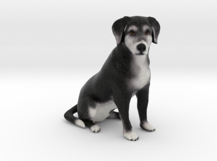 Custom Dog Figurine - Tippy 3d printed