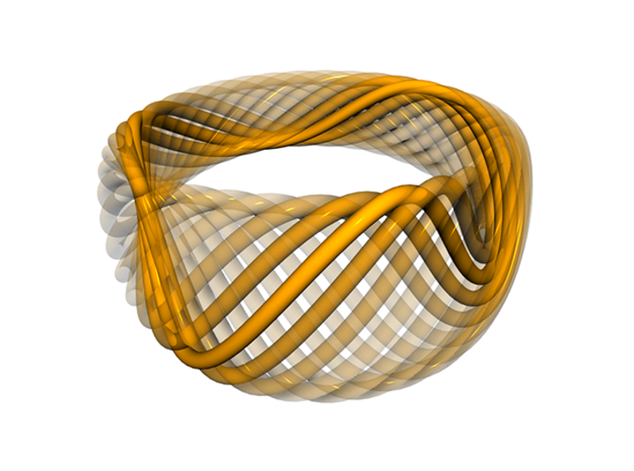 Twisted Ring - Size 5 3d printed Construction