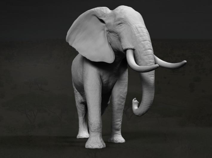African Bush Elephant 1:32 Walking Male 3d printed