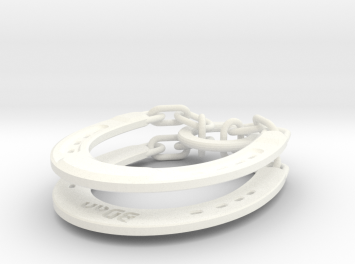 Horseshoe Puzzle 3d printed