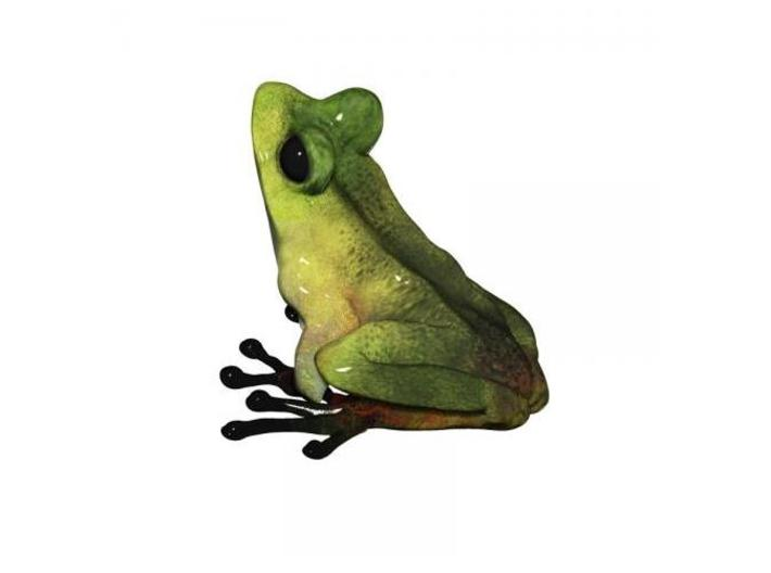 Tree Frog 3.6cm 3d printed By Eric Thorsen