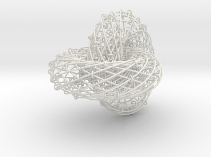 Torus Inside Out 3d printed