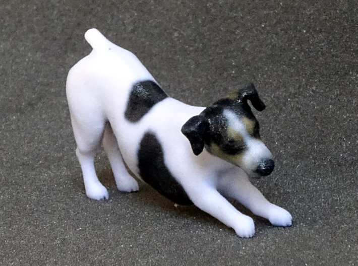 Stretching Jack Russell Terrier 3d printed
