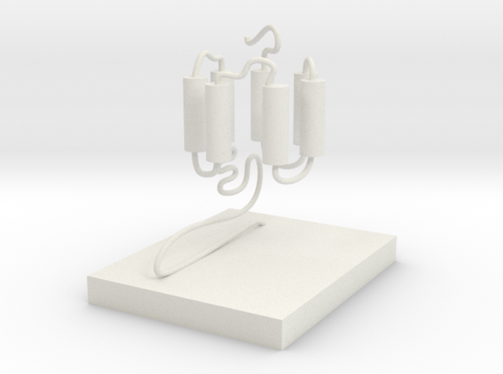 GPCR(3D With Stand) 3d printed
