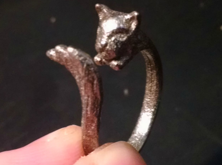 Silvercat Ring 3d printed Picture by FluoroNeuro