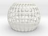 jamD Radiolarian 002 3d printed