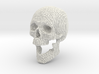 Wire Frame Human Skull Life Size 3d printed