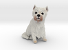 Custom Dog Figurine - Keops 3d printed