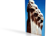 Gaudi Faces 6in 3d printed