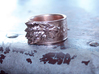 Game of Thrones House of Stark Ring Size 11 1/2 3d printed