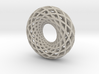 Torus 12, 3.18 mm thick strips 3d printed