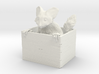 Ayeaye in a Box 3d printed