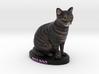 Custom Cat Figurine - Boo Boo 3d printed