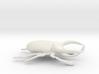 Atlas Beetle figurine/brooch 3d printed