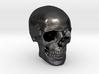1/24  Human Skull Crane Schädel че́реп 3d printed