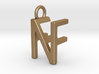 Two way letter pendant - FN NF 3d printed