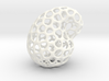 Klein Bottle for Home 3d printed