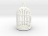 Freedom Birdcage Pendant 3d printed