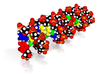 "DNA Molecule Model ""SEBATLAB"" 3d printed"