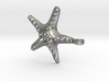 Sea Star Necklace 3d printed