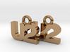 U2 Earrings 3d printed