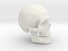 Skull Real 3d printed