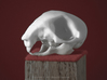 Squirrel Skull 3d printed WSF Polished