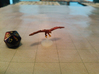 Blood Hawk 3d printed