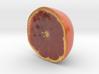 The Grapefruit-Half-mini 3d printed