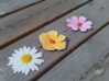 The 3 Flowers 3d printed