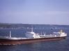 1:1250 Dutch Shell tanker Viana 3d printed